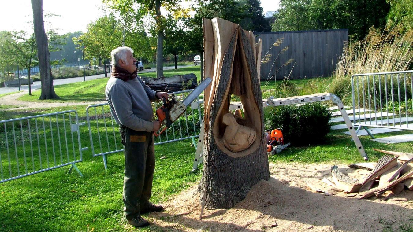 Cabusa sculpteur tronc bois arbre nord hauts de france